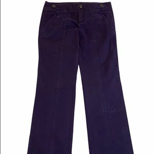 IDRA Anthropologie Purple Chino Pants